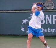 Juan Carlos Ferrero at the 2010 BNP Paribas Open Stock Photography