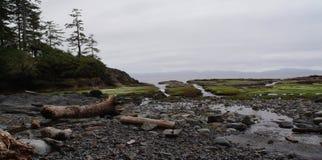 Juan De Fuca Marine Trail Stock Afbeeldingen