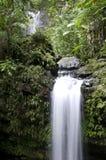 Juan Diego Falls Stock Images