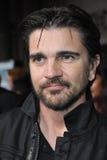 Juanes Royalty Free Stock Photo