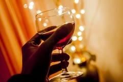 Jubel med vin Royaltyfri Bild