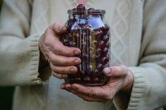 Jubilados/taza de la cereza en manos en el campo Fotos de archivo