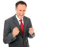 Jubilating businessman Stock Photos