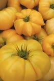 Jubilee Heirloom Tomato Organic Royalty Free Stock Photography