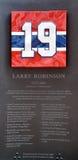Jubileums- platta 19 av Larry Clark Robinson Arkivbild