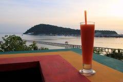 Juce папапайи с взглядом на пляже захода солнца Стоковые Фотографии RF