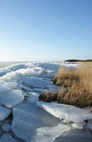 Juczny lód i łąka Obraz Stock