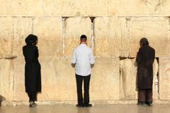 Judar ber på den västra väggen i Jerusalem Arkivbild
