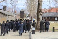 Judar i Auschwitz arkivbild