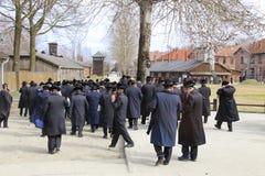 Judar i Auschwitz royaltyfri bild