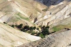 Judea öken - Israel royaltyfri fotografi