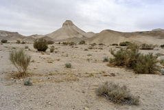 Judea desert landscape. Royalty Free Stock Photography