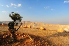 Judea Mountains Royalty Free Stock Photo