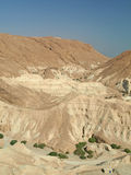 judean的沙漠 库存照片