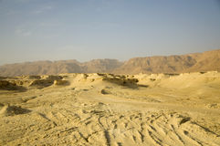 Judean desert Stock Photography
