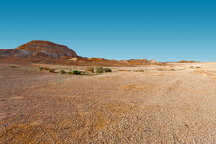 Judean Desert Royalty Free Stock Images