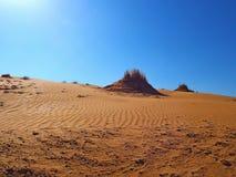 judean desert Obraz Stock