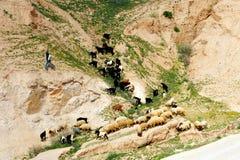 The Judean Desert - Israel Stock Photo