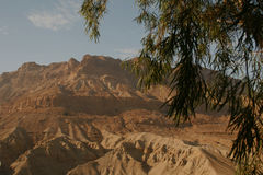 Judean Desert Mountains landscape Stock Images