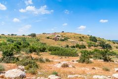 Judean Hills near Beit Shemesh Stock Photography