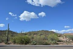 Judean Wüste Lizenzfreies Stockfoto