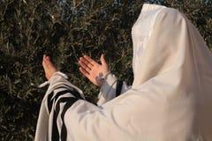 Juden ber prayerbook och att blåsa shofaren av Rosh Hashanah Royaltyfri Foto