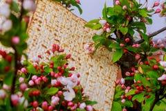 Judendom och klosterbroder på judisk matza på påskhögtidtallit royaltyfri bild