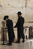 Judeus Hasidic na parede ocidental Imagens de Stock