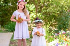 Judisk ferie Shavuot HarvestTwo sm? flickor i den vita kl?nningen rymmer en korg med ny frukt i en sommartr?dg?rd arkivbild