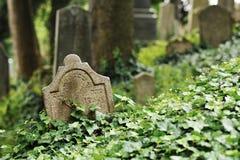 Judisk kyrkogård Telc Arkivbilder
