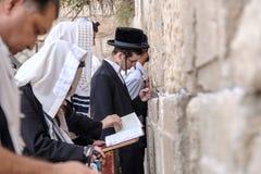 Judisk man på den västra väggen Arkivfoto