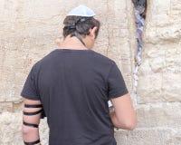 Judisk man på den västra väggen Royaltyfri Fotografi