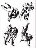 judo собрания Стоковая Фотография