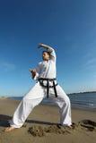 Judo Image libre de droits