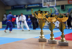 Judo. Gold Cup against the background of the sports hall. Youth Judo competition royalty free stock image