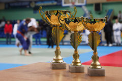 Judo. Gold Cup against the background of the sports hall. Youth Judo competition stock photography