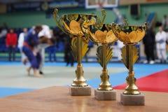 Judo stock photography