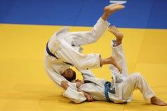 judo Immagini Stock Libere da Diritti