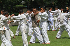 judo Royalty-vrije Stock Fotografie