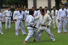 judo Fotografia Stock Libera da Diritti