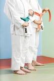 judo Стоковое Изображение