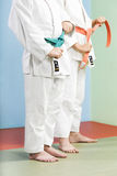 Judo Stock Afbeelding