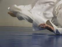 Judo fall Stock Image