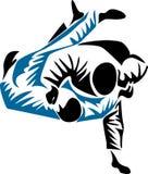 Judo Stock Photo