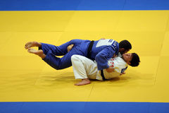 Judo fighters Royalty Free Stock Image