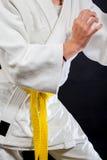 Judo yellow belt Royalty Free Stock Photo