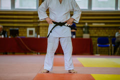 Judoka fighter before fight. On tatami in white kimono and black belt royalty free stock images