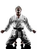 Judoka fighter man silhouette Stock Image