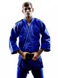 Judoka fighter man silhouette Royalty Free Stock Image