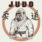 Judoka gorilla dressed in kimono Stock Photos